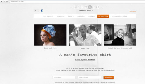 ceesnco-wordpress-img1