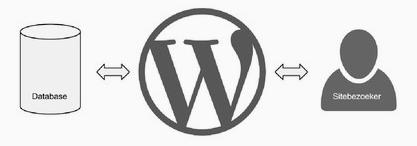 database-wordpress