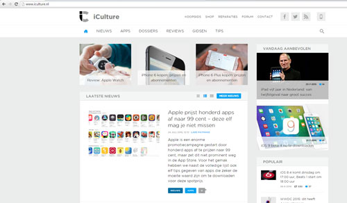 iculture-wordpress-img1